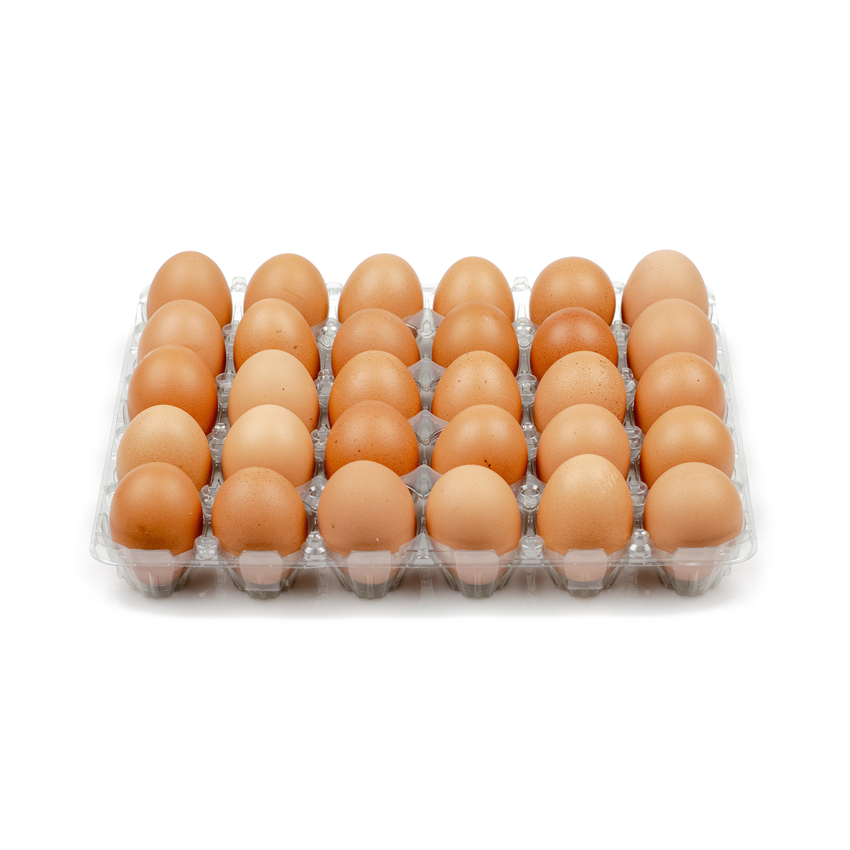 Eieren Doos 30 Stuks